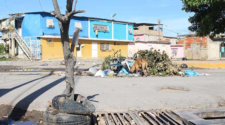 Desechos y alcantarillas rotas abundan en las calles del sector Las Delicias
