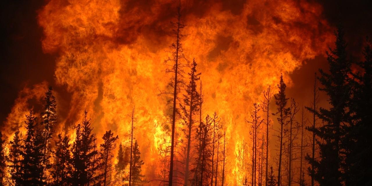 México, Perú, Argentina y Francia ayudarán a Chile en incendios