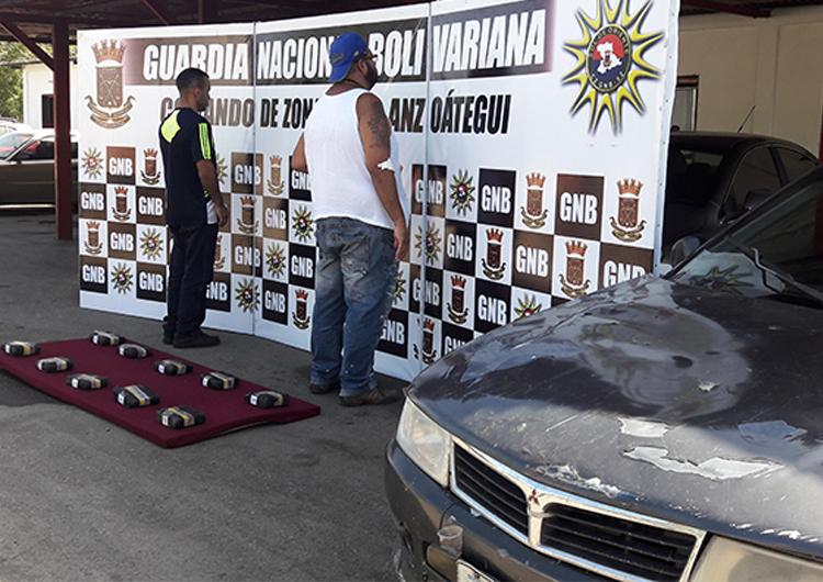 GNB incautó marihuana y desmanteló banda de abigeato