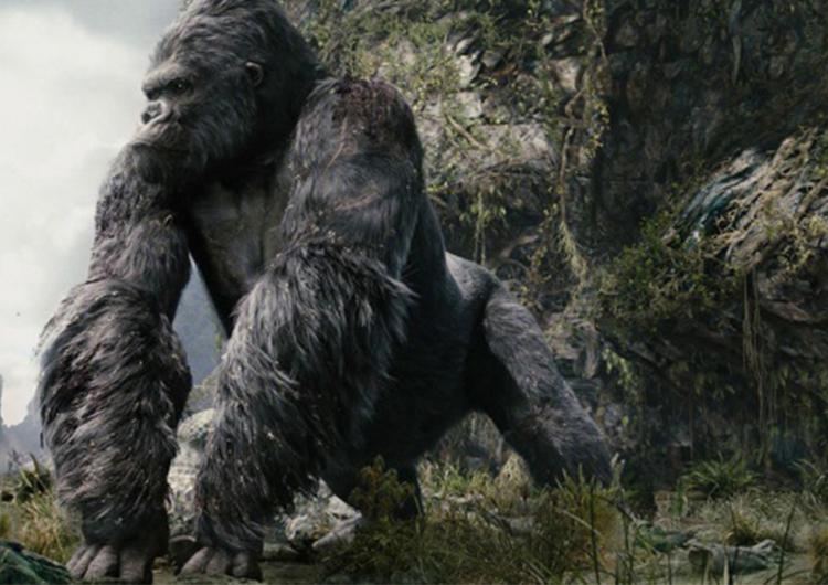 King Kong y la «Isla Calavera» sorprenden en la gran pantalla