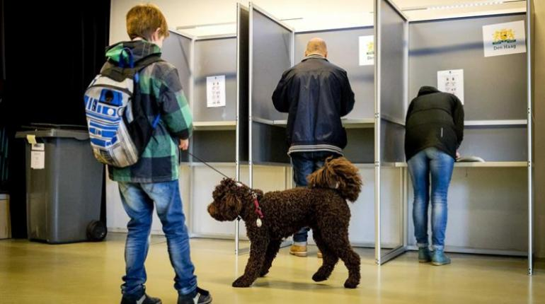Votantes ejercen su derecho camino al trabajo en aeropuertos y estaciones de tren