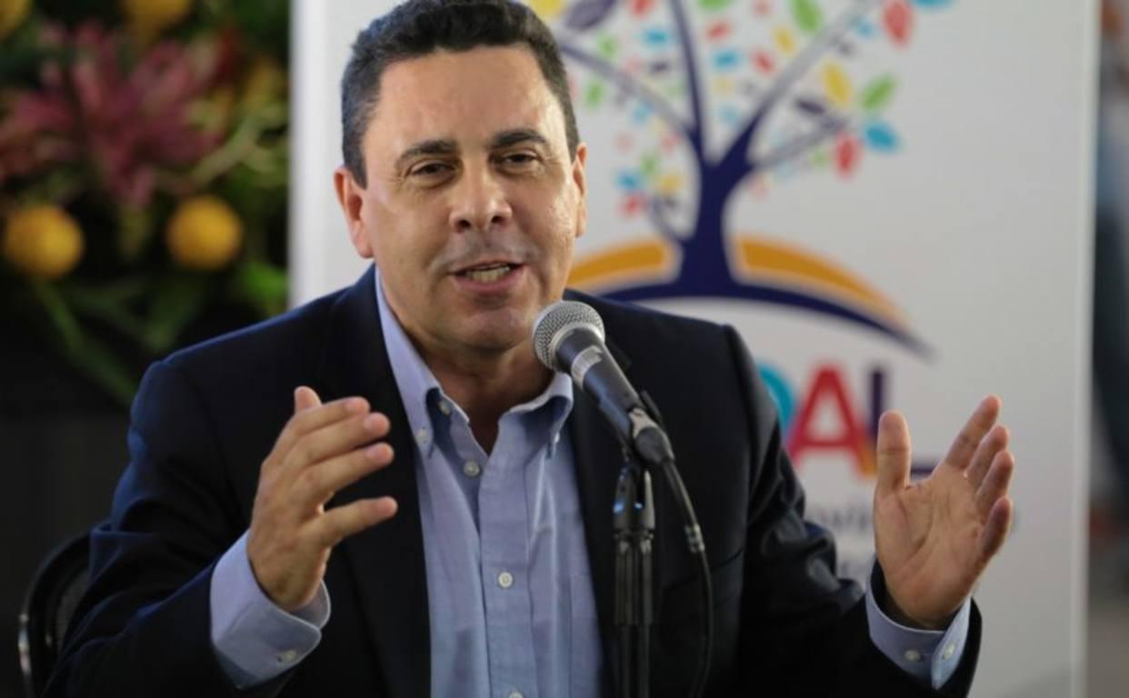 Moncada acusó a la OEA de generar violencia en Venezuela