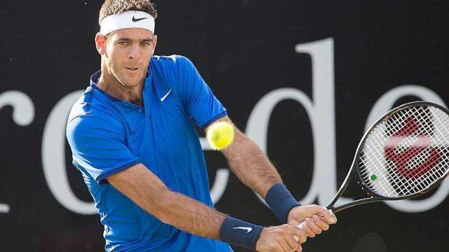 Del Potro si jugará el Roland Garros