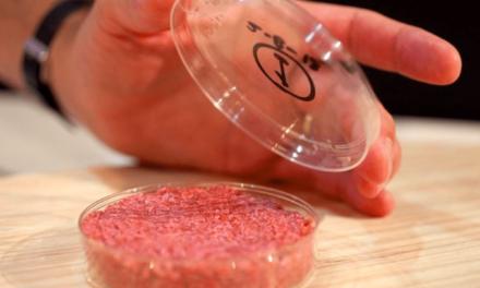 La carne artificial podría llegar a los restaurantes en el 2021