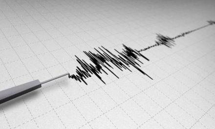 Nuevos sismos sacuden Yaguaraparo según Funvisis