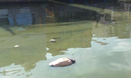 identificaron a hombre ahogado en Casas Bote B