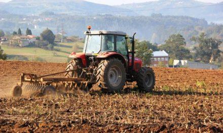 Fedeagro rechazó los precios impuestos a la cosecha de maíz