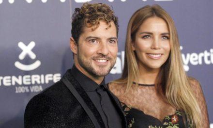 David Bisbal y Rosana Zanetti van a ser padres