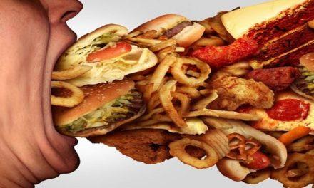La comida chatarra produce síndrome de abstinencia