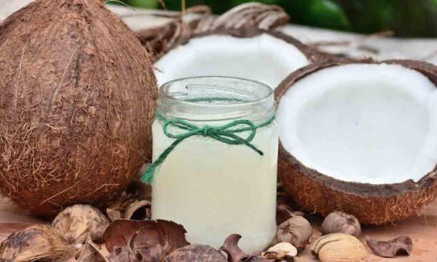 Conoce los beneficios del coco