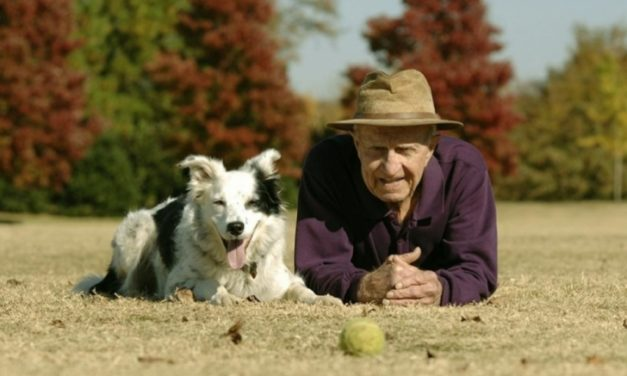 Murió Chaser, el perro más inteligente del mundo que sabía más de 1000 sustantivos