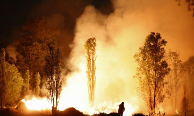 Rusia declaró estado de emergencia por los incendios forestales en Siberia