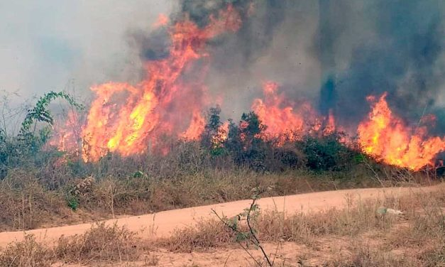 Por incendios forestales en Sierra Nevada de Santa Marta activan alerta en Colombia