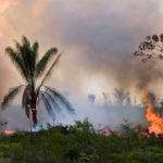 La Comisión Europea está preparada para enviar ayuda contra los incendios en la Amazonía