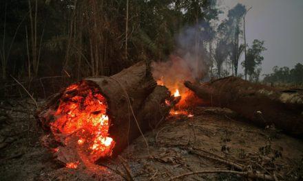Ministro de Defensa de Brasil anuncia que incendios en la Amazonía «están bajo control»