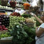 Falta de semillas generará alza en precios de hortalizas