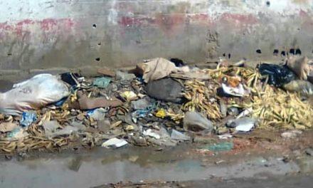 Denuncian que tienen 10 días sin recoger la basura en Puerto La Cruz